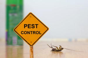 Idaho Falls Pest Control Services
