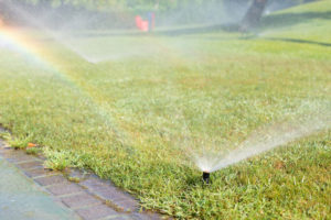 sprinkler system with rainbow